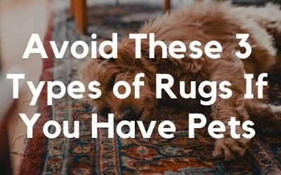 Avoid These 3 Types of Rugs If You Have Pets