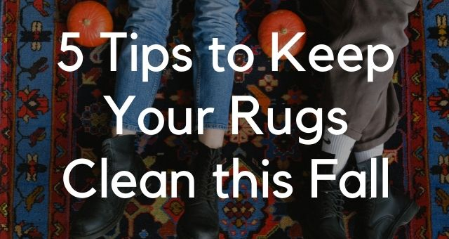 5 Tips to Keep Your Rugs Clean this Fall